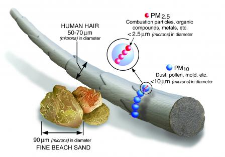 A picture provided by the EPA that describes what PM2.5 and PM10 are